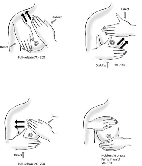 self breast diagram breast cancer faqs