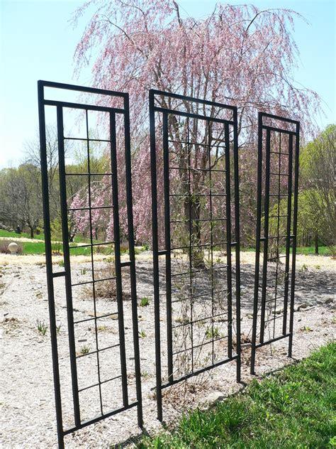 garden trellis design ideas for metal garden trellis design 20486