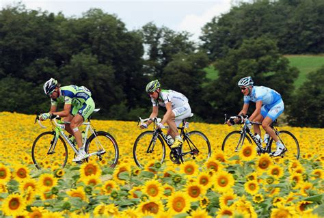 tour pic the tour de france in burgundy this summer the grape journal
