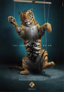 Animal Cruelty In Circuses Essay by Circuses Animals Australia Unleashed