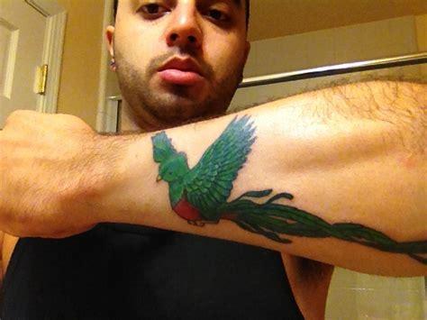 guatemala tattoos quetzal guatemalan national bird tattoos