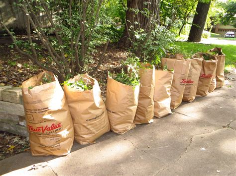 New Backyard by New Rochelle Yard Waste Collection Begins April 7 Talk