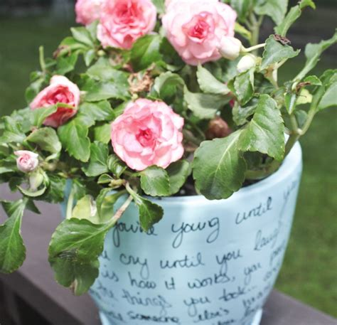 flower pot diys  cottage market
