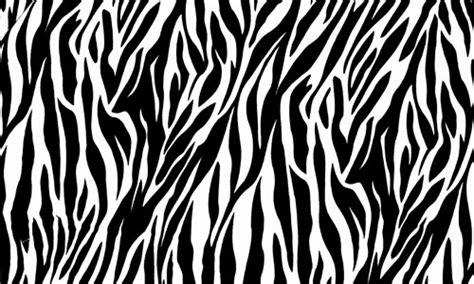 printable zebra print paper 30 striking zebra print texture for free download naldz