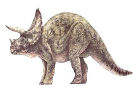 imagenes animales prehistoricos ranking de animales prehist 243 ricos incre 237 bles y extra 241 os