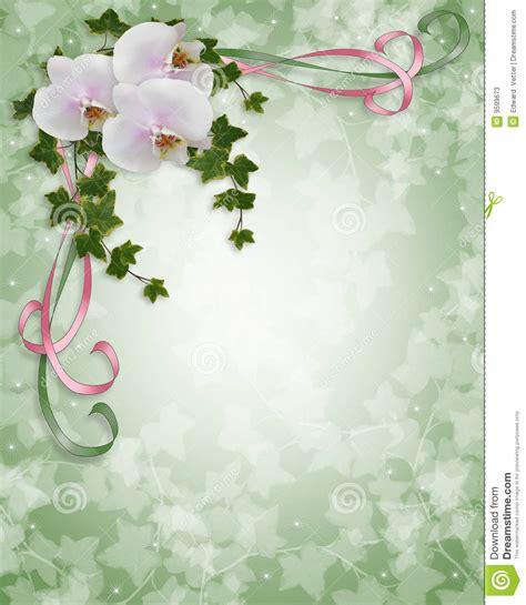 matrimonio fotos de archivo e im genes matrimonio apexwallpaperscom orqu 237 deas e invitaci 243 n de la boda de la hiedra fotos de