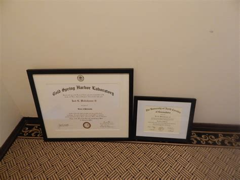 Mba Courses For Diploma Holders by Diploma Frames Of Miami X Diploma Frame