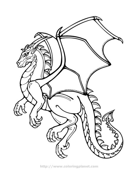online coloring pages of dragons realistic dragon coloring pages az coloring pages
