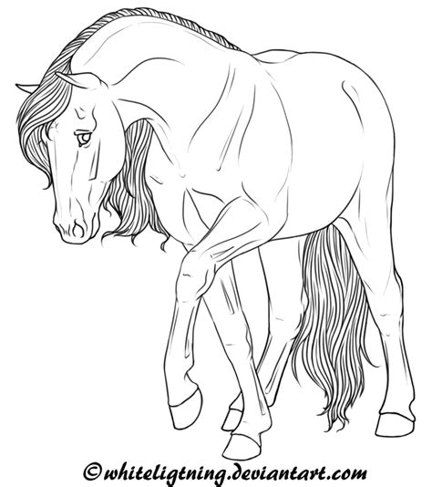 printable line art wild horses coloring pages