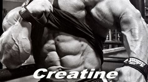 creatine questions common creatine questions and answers arnold schwarzenegger