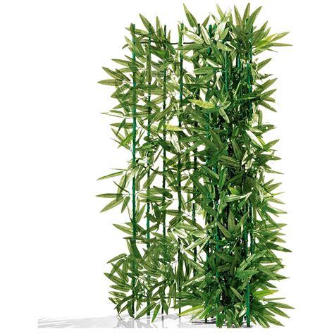 Bambus Pflanzen Sichtschutz 780 bambus pflanzen sichtschutz sichtschutz pflanzen kaufen