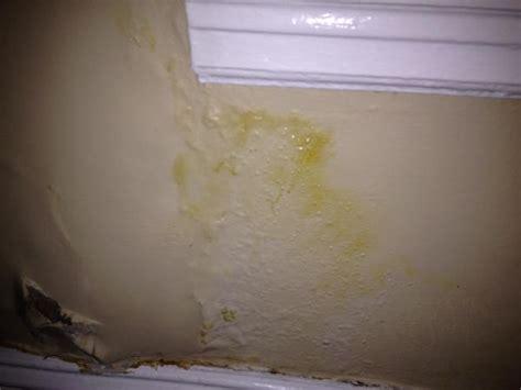 plaster wall damage under window doityourselfcom