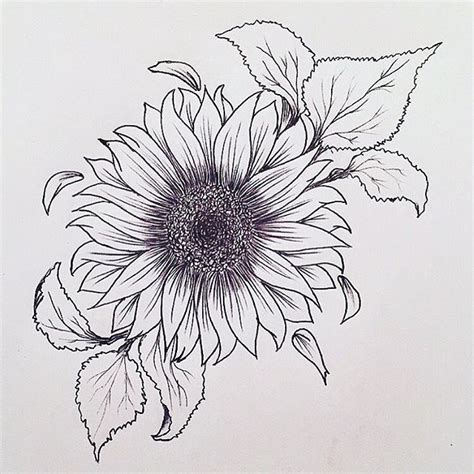sunflower outline tattoo best 25 flower designs ideas on