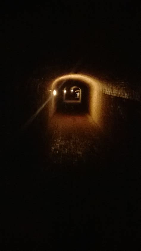 tunnel lit fille the un stately home ruth downie