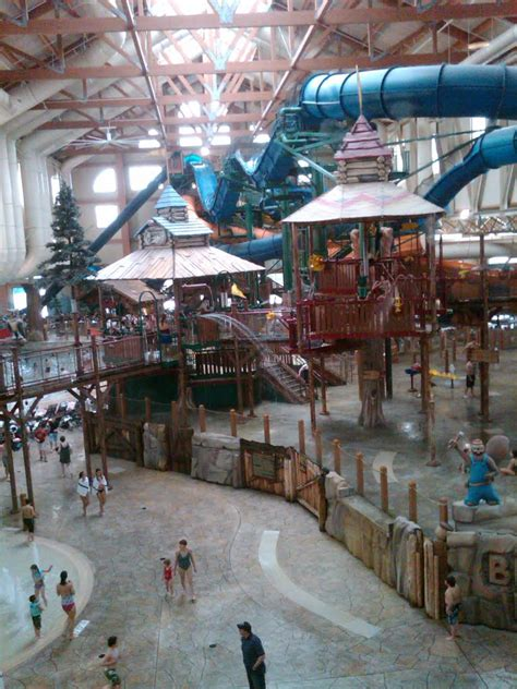 bed bugs great wolf lodge pa 28 images shot of my sons