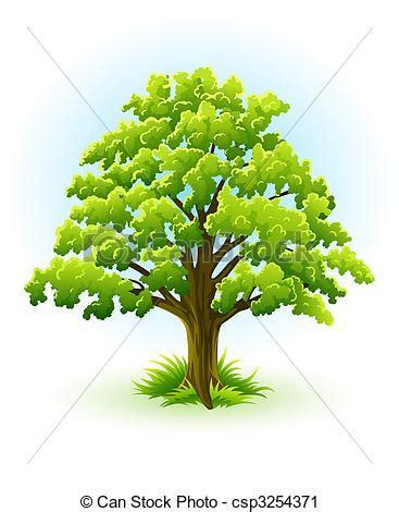 clipart alberi clipart vettoriali di albero singolo quercia verde