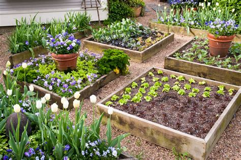vegetable garden bed ideas the simplicity of raised vegetable garden front yard
