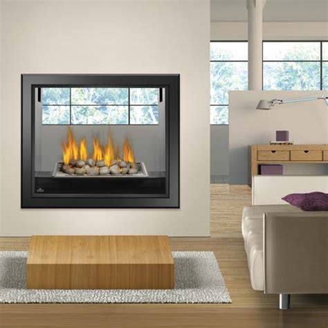 See Through Gas Fireplace Inserts by Napoleon Hd81 See Thru Gas Fireplace Fireplace