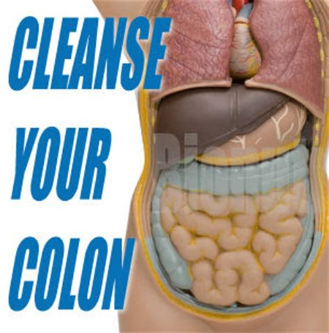 Effects Of Fiber On Stool by Everythinghealth Colon Detoxification