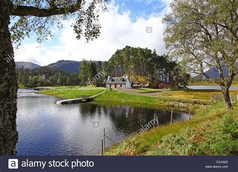 glen affric estate looking towards affric lodge on loch affric glen affric scottish stock photo royalty free image