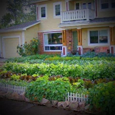 the edible front yard edible front yard garden