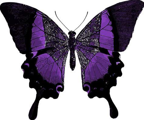 tattoo berwarna png free illustration purple butterfly colorful pretty