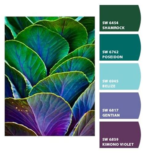 713 best beautiful color inspiration 3 images on color inspiration paint colors