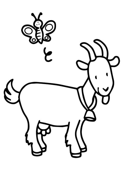 cute goat coloring page cute goat coloring books for kids coloring pages for