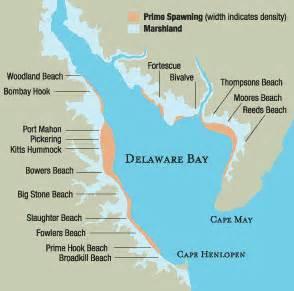 delaware bay us map history the amazing horseshoe