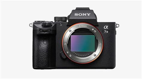 mirrorless digital the best mirrorless for any budget muted