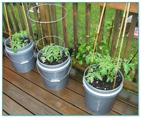 container gardening for dummies outdoor water parts