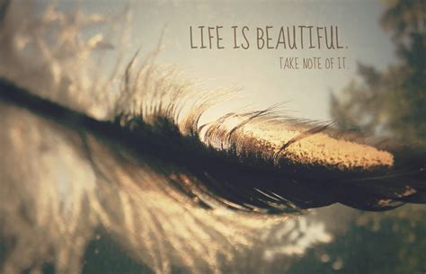 Is Beautiful Quotes Is Beautiful Roz In Focus