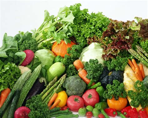 corretta alimentazione vegetariana medbunker le scomode verit 224 dieta vegetariana salute o