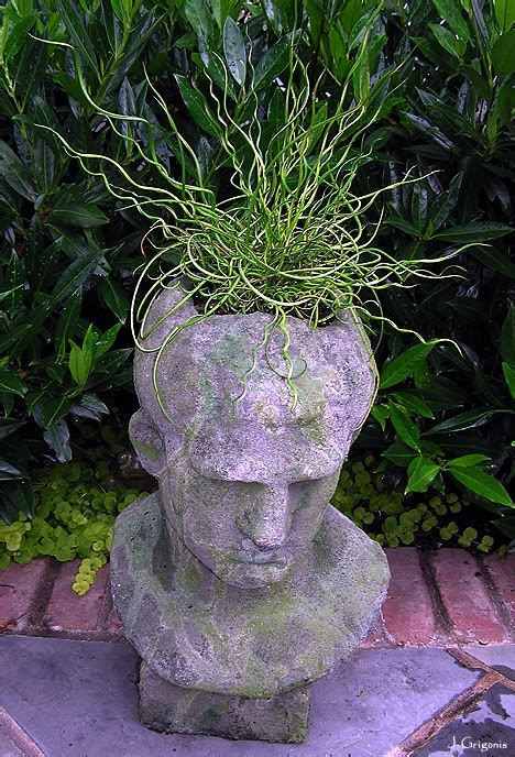 medusa planter 17 best images about head planters on pinterest gardens