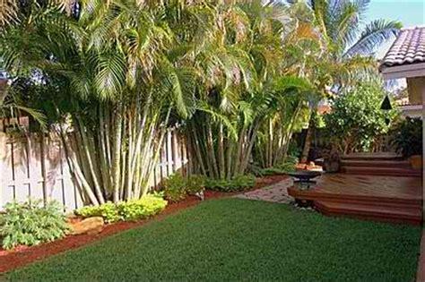 tropical backyard design backyard designs tropical izvipi com