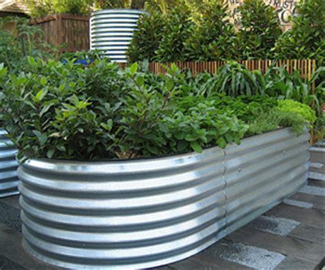 Corrugated Iron Vegetable Garden A Raised Vegetable Bed Globalnet Academy