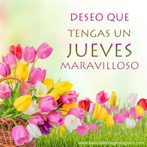 imagenes d feliz dia jueves feliz jueves happy thursday on pinterest happy thursday