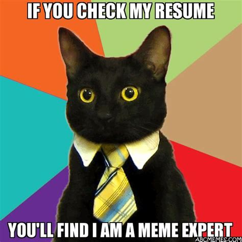 if you check my resume you ll find i am a meme expert