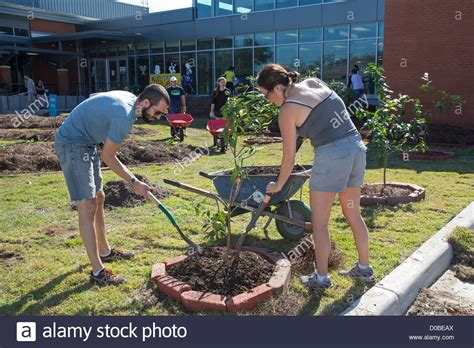 volunteers work on landscaping and build an quot edible schoolyard quot at stock photo royalty free