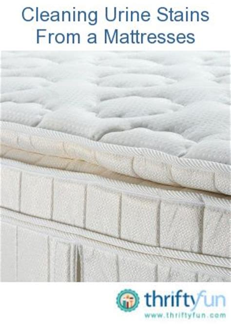 How To Remove Stains From Mattress With Vinegar by 1000 Images About Tips Tricks And Home Remedies On