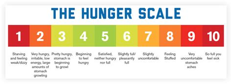 Health The Hunger Scale by Hunger Scale For Weight Loss Lose Weight Tips