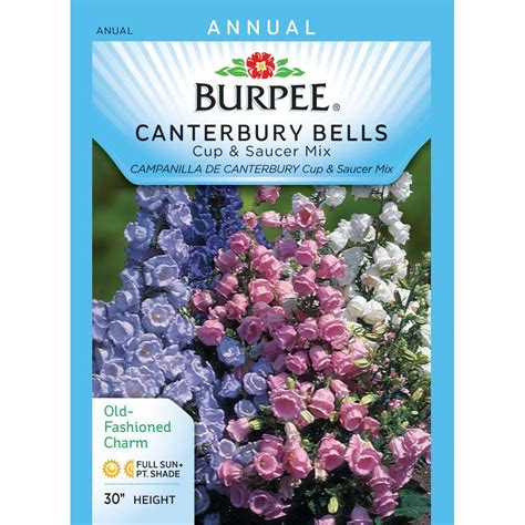 burpee canterbury bells cup and saucer mix seed 36761