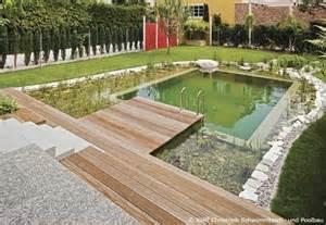 schwimmteich im garten pool oder schwimmteich im garten bauen garten hausxxl