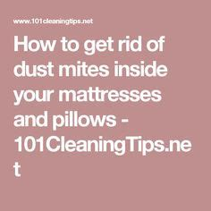 how to get rid of dust mites in couch m 225 s de 1000 ideas sobre dust mites en pinterest chinches