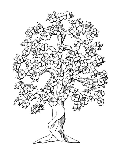 Tree Coloring Pages For Adults free printable tree coloring pages for