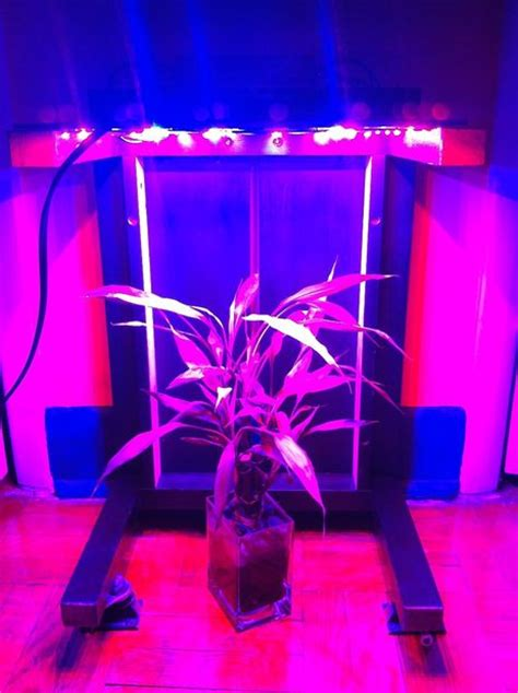 build your own high power led grow light 10 diy led grow lights for growing plants indoors home