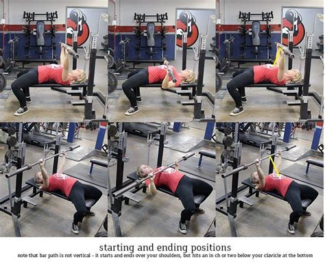 how do you bench press 25 best ideas about nerd fitness on pinterest