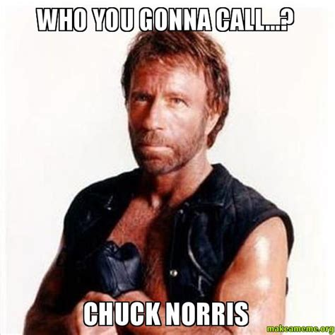 Who Are You Meme - who you gonna call chuck norris make a meme