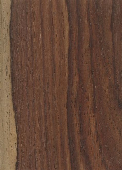 rosewood woodworking rosewood the wood database lumber