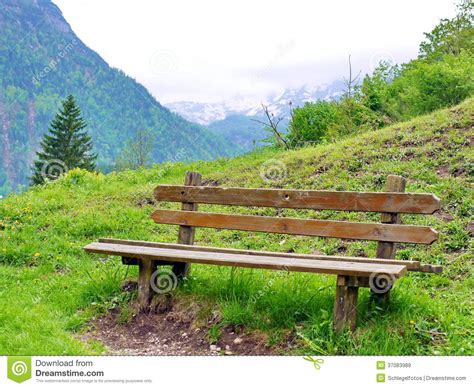 bench in nature park bench in nature stock image image of nature empty
